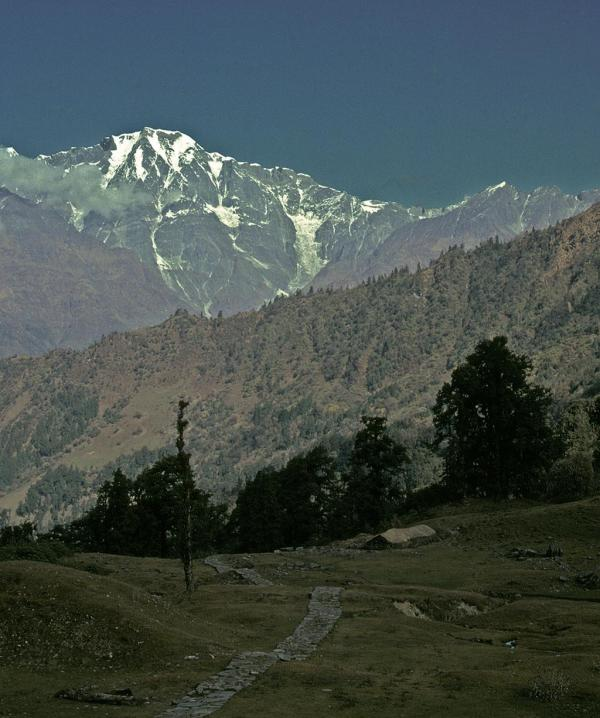 Photo of a mountain trail in Kumaon